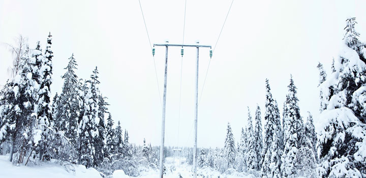 Power lines in snow